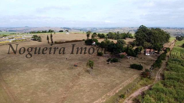 Fazenda com 69 alqueires na região (Nogueira Imóveis Rurais) - Foto 5