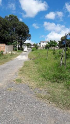 Lote à venda, Braúnas - Belo Horizonte/MG - Foto 6