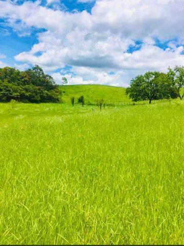 M-91 Grande oportunidade terrenos com 10.000 metros de área verde e vista para a represa - Foto 4