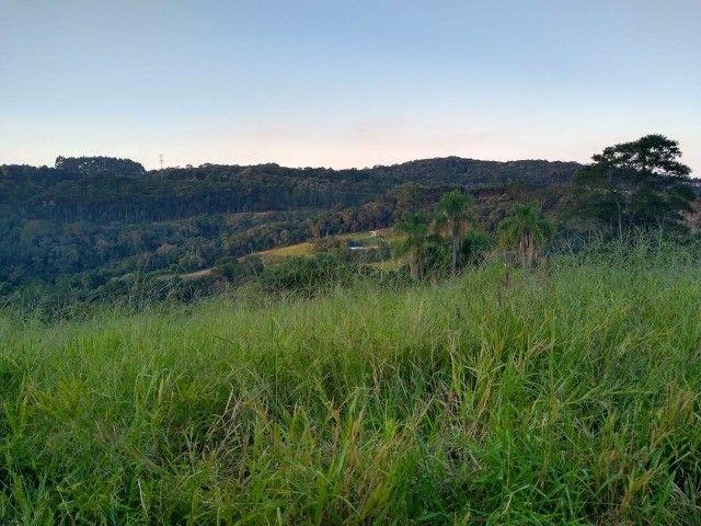 Chácara Campo largo Curitiba 27.422,13m² ( matricula individualizada) - Foto 2