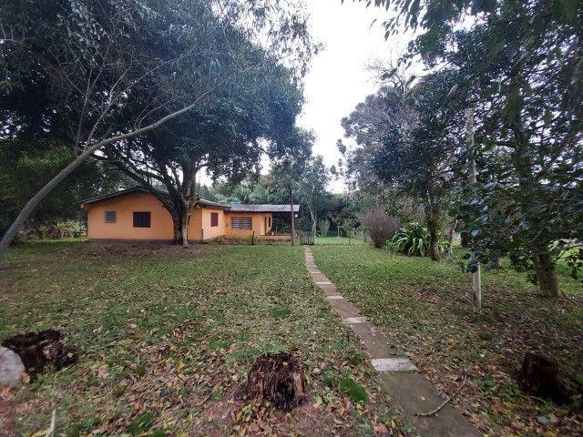 Sitio 8 hectares, 2 casas e pomar, ótimas pastagens, Velleda oferece - Foto 19