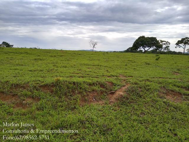 Fazenda em Americano do Brasil! - Foto 3
