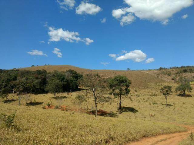 Sítio à venda com 2 dormitórios em Morro da mata, Cachoeira do campo cod:5931 - Foto 5