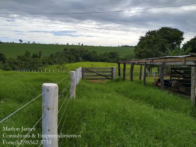 Fazenda em Americano do Brasil! - Foto 14