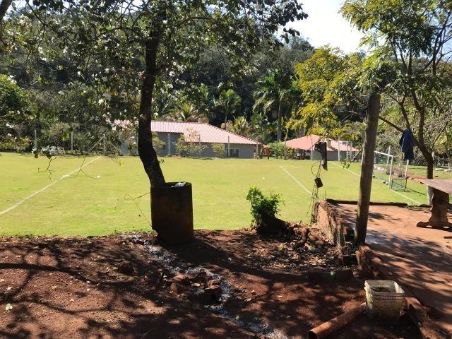 Sitio de 4 Alqueires em Londrina Pr - Foto 15