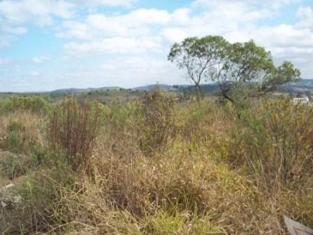Terreno à venda em Maracujá, Ouro preto cod:4267 - Foto 4
