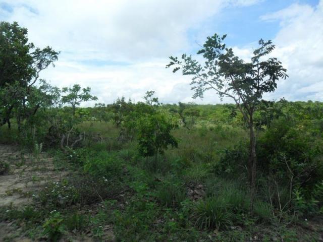 Chácara à venda com 3 dormitórios em Zona rural, Três marias cod:394 - Foto 14
