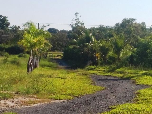 Terreno com galpão 150 metros, na entrada do Bairro do Náutico. - Foto 3