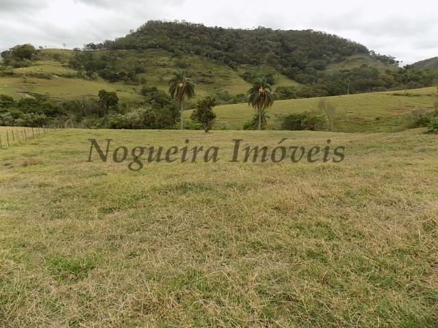 Fazenda de 65 alqueires na região (Nogueira Imóveis Rurais) - Foto 9