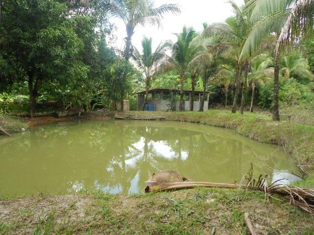 Jordão Corretores - Fazendinha 18 hectares Cachoeiras de Macacu - Foto 8