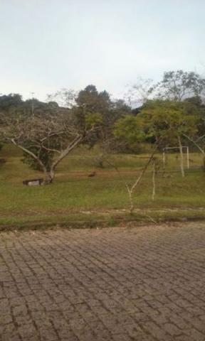 Terreno à venda em Ipanema, Porto alegre cod:MI15176 - Foto 2
