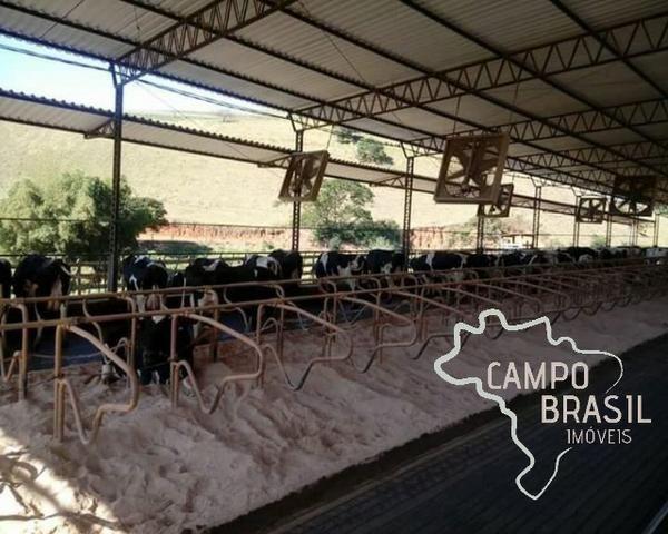 Linda Fazenda no Sul de Minas! Muito conforto e excelentes condições - Foto 16