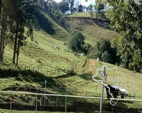 Linda Fazenda no Sul de Minas! Muito conforto e excelentes condições - Foto 13