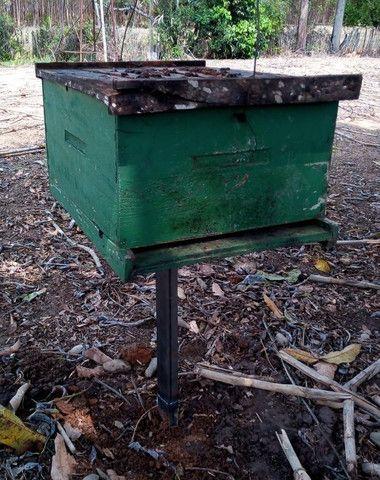 Suporte para caixa de abelhas em metalon - Foto 2