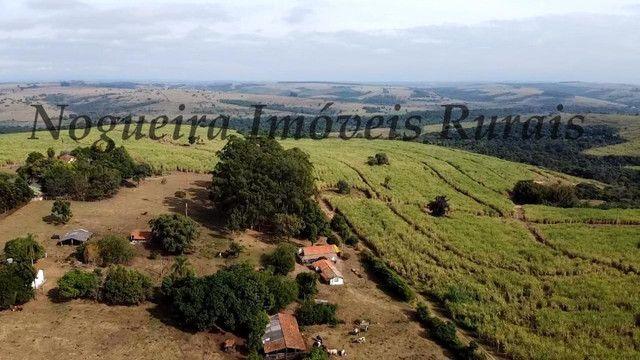 Fazenda com 69 alqueires na região (Nogueira Imóveis Rurais) - Foto 12