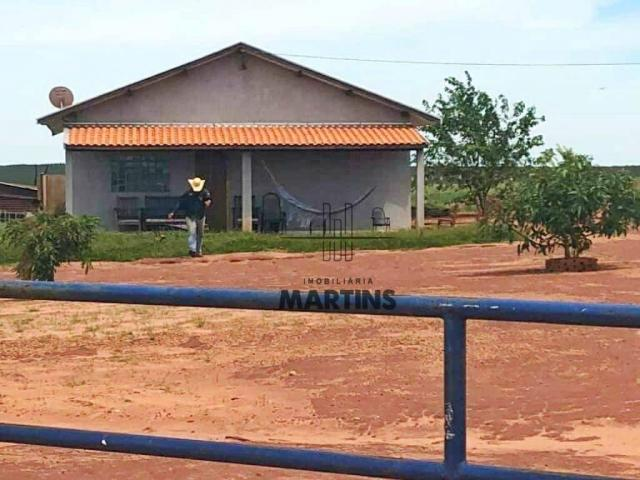 Fazenda - Bataguassu - Mato Grosso do Sul - Foto 2