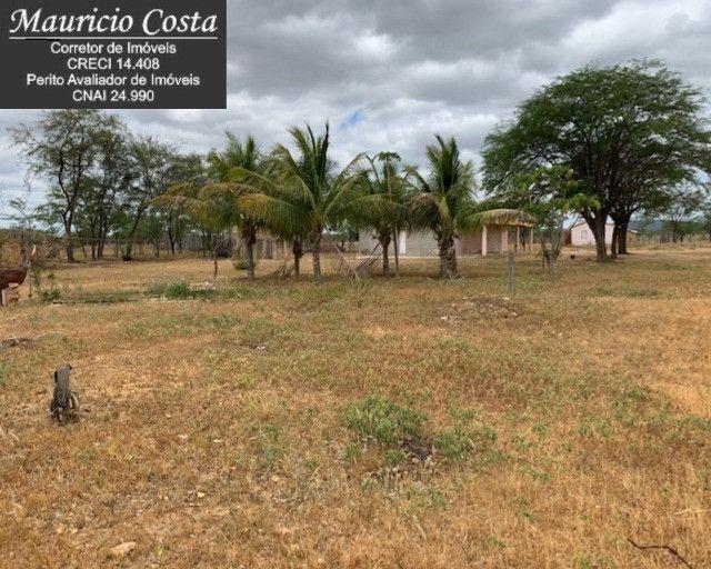 Fazenda à Venda em Campo Formoso - Bahia - Foto 19