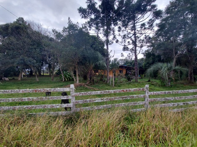 Sitio 8 hectares, 2 casas e pomar, ótimas pastagens, Velleda oferece - Foto 15