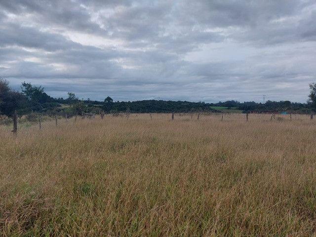 Sitio 8 hectares, 2 casas e pomar, ótimas pastagens, Velleda oferece - Foto 6