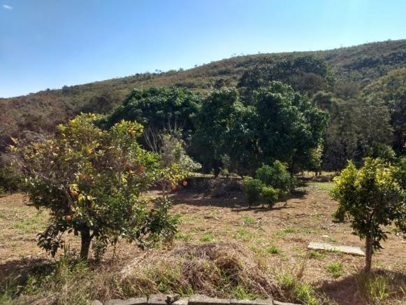 Sítio à venda com 2 dormitórios em Morro da mata, Cachoeira do campo cod:5931 - Foto 3