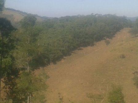 Sítio à venda em Zona rural, Piranga cod:7854 - Foto 5