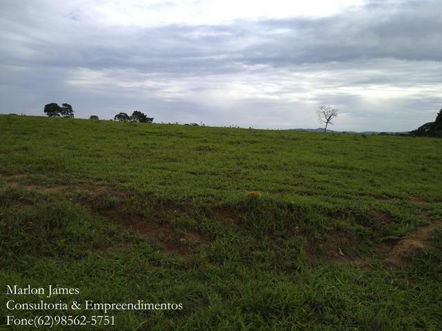 Fazenda em Americano do Brasil! - Foto 9