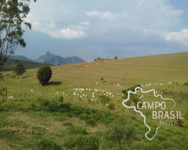 Fazenda de 98 alqueires no Sul de Minas! - Foto 9