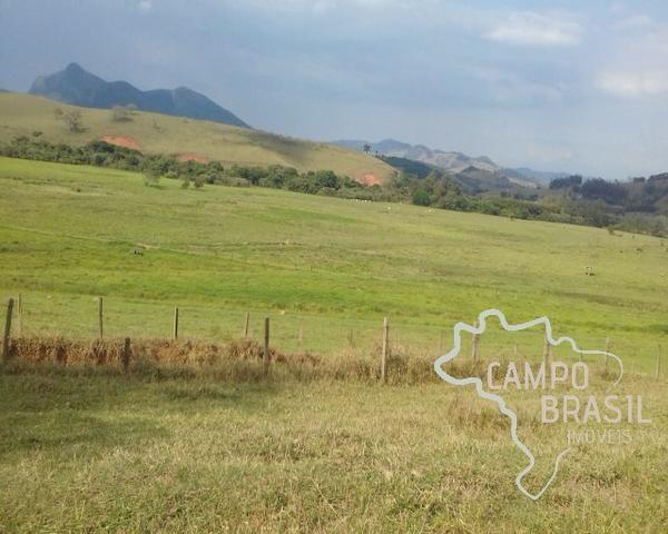 Fazenda de 98 alqueires no Sul de Minas! - Foto 2