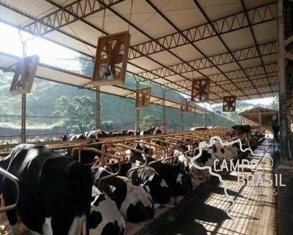 Linda Fazenda no Sul de Minas! Muito conforto e excelentes condições - Foto 2