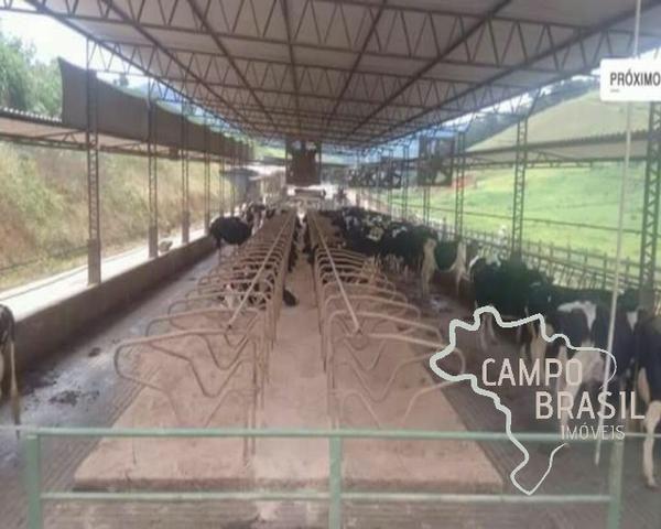 Linda Fazenda no Sul de Minas! Muito conforto e excelentes condições - Foto 20