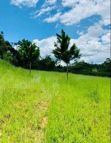 M-91 Vende-se Terrenos com linda vista e área verde - Foto 2