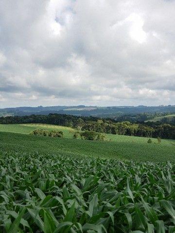 Terreno rural  - Foto 3