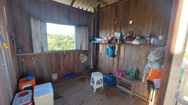 Vendo Sítio de 35 Hectares no KM 100, Ramal São Bernardo. BR 319.   - Foto 2