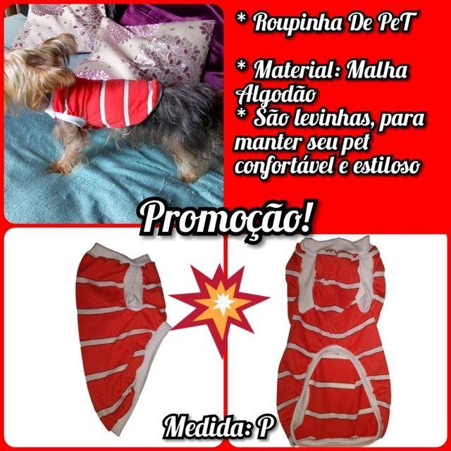 Roupa Pet Promoção imperdível! - Foto 3