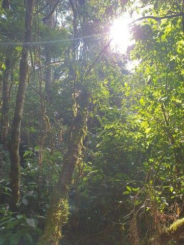 Chácara Campo largo Curitiba 27.422,13m² ( matricula individualizada) - Foto 4