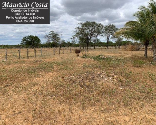 Fazenda à Venda em Campo Formoso - Bahia - Foto 20