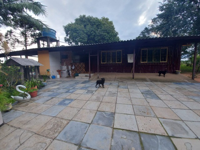 Sitio 8 hectares, 2 casas e pomar, ótimas pastagens, Velleda oferece - Foto 8