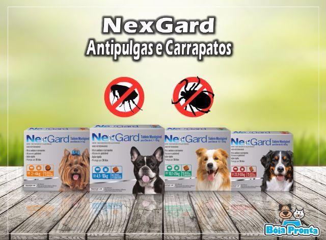 NexGard Elimina as Pulgas e Carrapatos em até 48 Horas