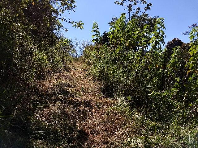 Excelente terreno em Teresópolis
