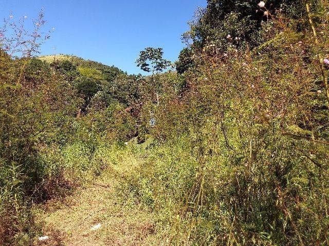 Excelente terreno em Teresópolis - Foto 4