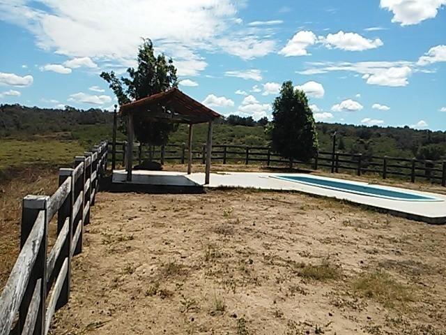 Fazenda de gado em formosa do rio preto. excelente. - Foto 5