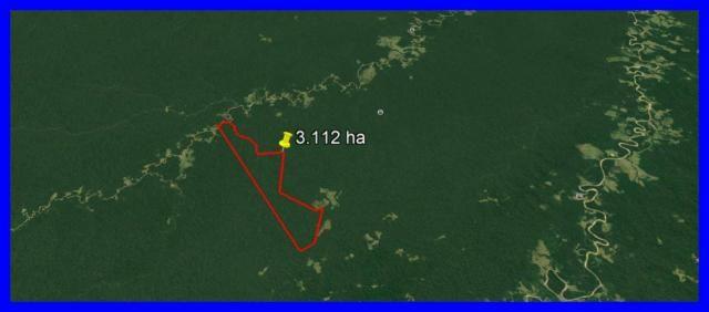 Fazenda para manejo de madeira no Acre ,Sena Madureira com 3112 hectares - Foto 2