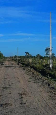 Barata! 167 Alq. Beira Rio / Cocalinho-MT. - Foto 13