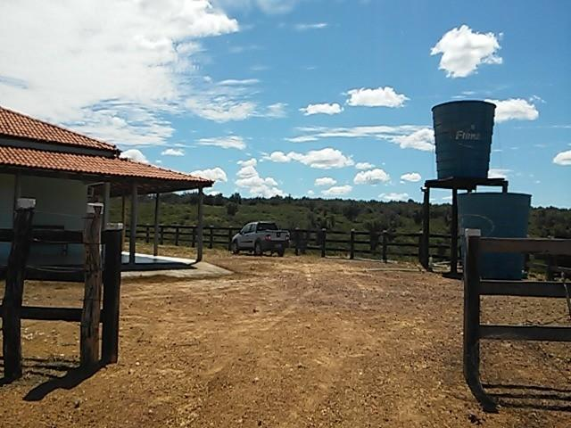 Fazenda de gado em formosa do rio preto. excelente. - Foto 2