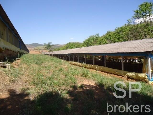 Chácara à venda com 1 dormitórios em Serra de cima, Serra negra cod:FA002536 - Foto 11