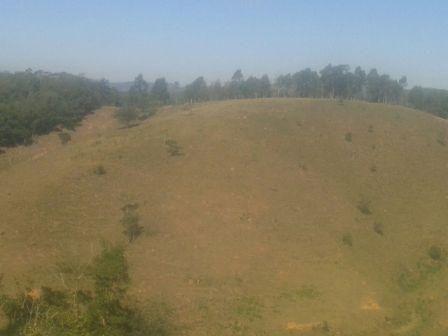 Sítio à venda em Zona rural, Piranga cod:7854 - Foto 4
