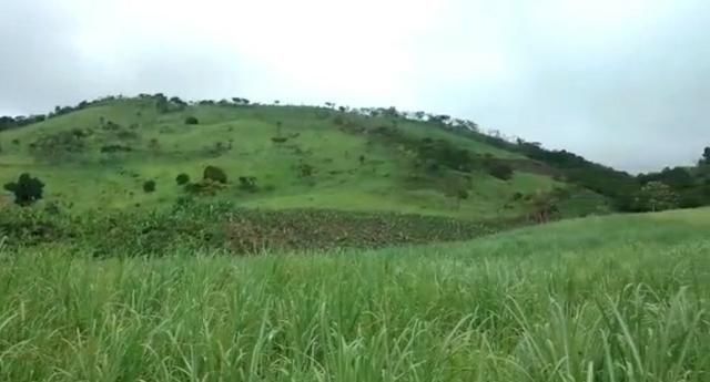 Propriedade de 140 hectares, entre Vitória e Escada-PE. - Foto 8