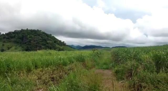 Propriedade de 140 hectares, entre Vitória e Escada-PE. - Foto 13