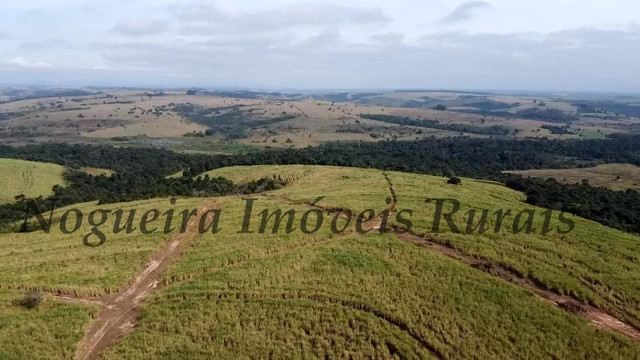 Fazenda com 69 alqueires na região (Nogueira Imóveis Rurais) - Foto 2