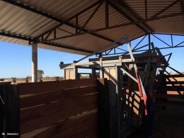 Fazenda para Venda em Gurupi, Área Rural de Gurupi, 3 dormitórios, 2 banheiros, 5 vagas - Foto 6